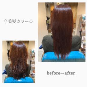 美髪カラー